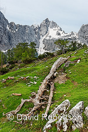 Sleme and Jalovec, Julian Alps, Slovenia